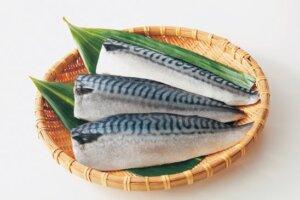 銚子産塩鯖